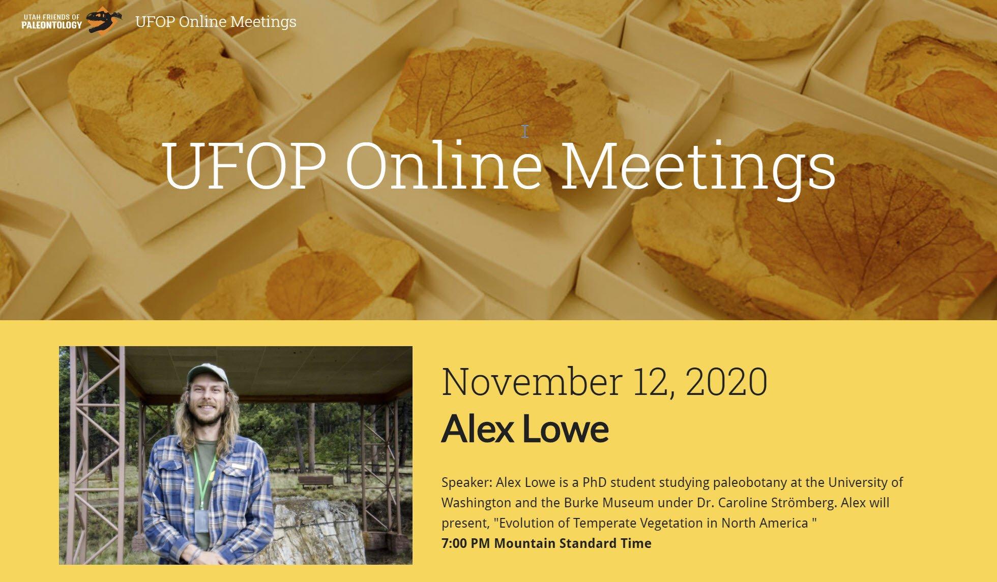 Lowe Online Talk promo Nov 2020